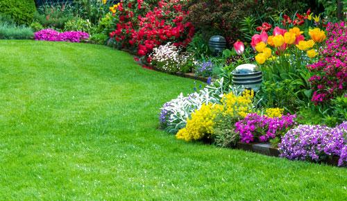 Agri & Garden